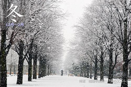 JR片町線(学研都市線)冬のイベント